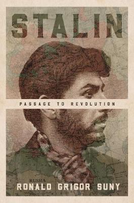 Stalin by Ronald Grigor Suny