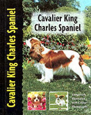 Cavalier King Charles Spaniel by Juliette Cunliffe