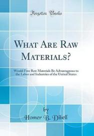 What Are Raw Materials? by Homer B Dibell