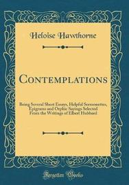 Contemplations by Heloise Hawthorne image