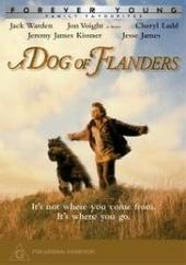 Dog Of Flanders, A on DVD