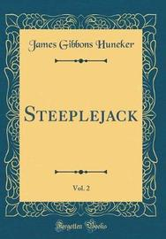 Steeplejack, Vol. 2 (Classic Reprint) by James Gibbons Huneker image