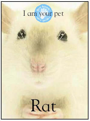 I am Your Pet Rat by Matthew Rayner