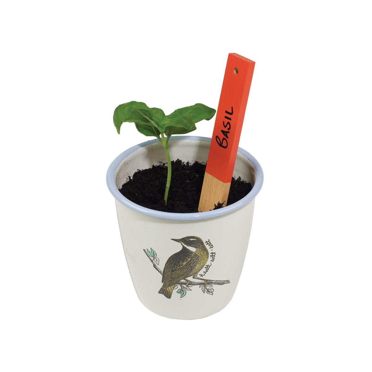 Thoughtful Gardener: Enamel Herb Pot Set image