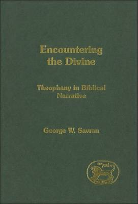 Encountering the Divine by George W. Savran image