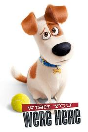 The Secret Life Of Pets Wall Poster - Wish You Were Here (442)