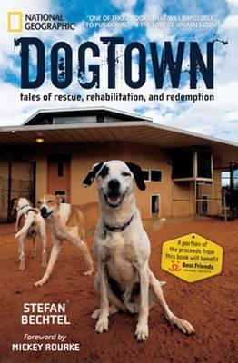 DogTown by Stefan Bechtel image