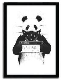 Balazs Solti Framed Illustration - Bad Panda image