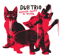 Another Sound Is Dying by Dub Trio image