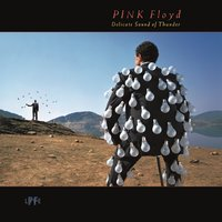 Delicate Sound Of Thunder [Live] (2LP) by Pink Floyd