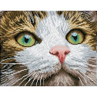 Diamond Dotz: Facet Art Kit - Green Eyed Beauty (Intermediate)