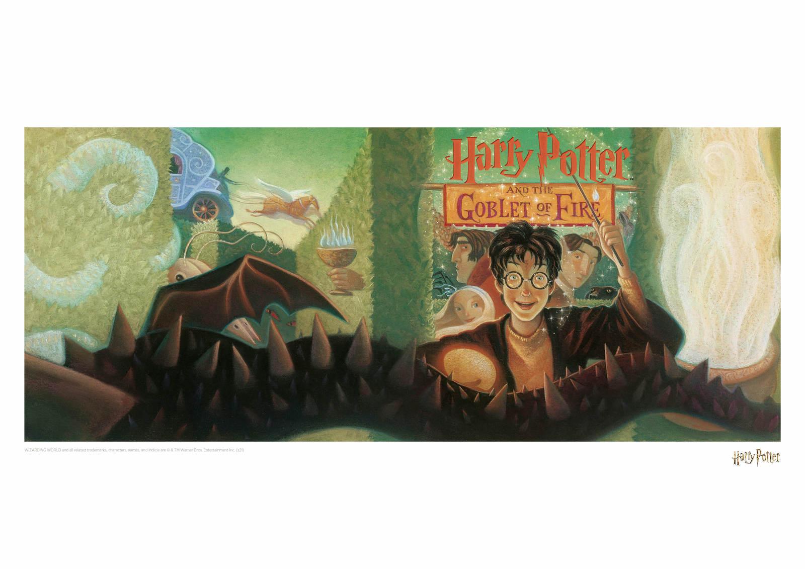 Harry Potter: Goblet of Fire - Book Cover Artwork image