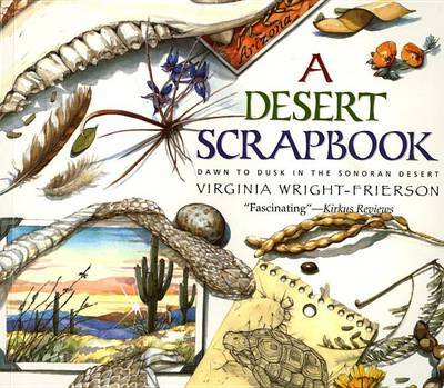 A Desert Scrapbook by Virginia Wright-Frierson image