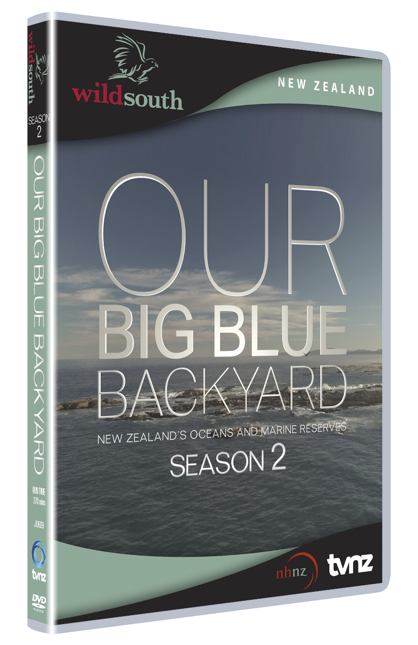 Our Big Blue Backyard - Season 2 on DVD image