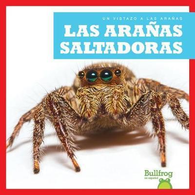 Las Aranas Saltadoras (Jumping Spiders) by Jenna Lee Gleisner