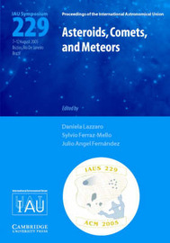 Asteroids, Comets, and Meteors (IAU S229) image