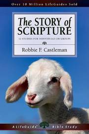 The Story of Scripture by Robbie Fox Castleman