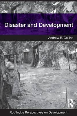 Disaster and Development by Andrew E Collins image