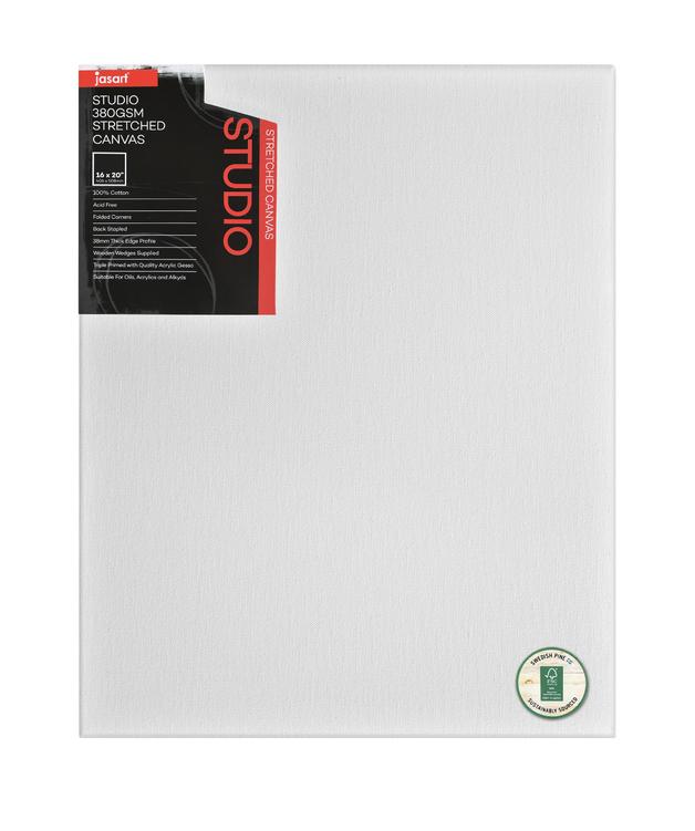 Jasart: Studio Thick Edge Canvas - 16 x 20