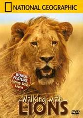 National Geographic - Walking With Lions on DVD
