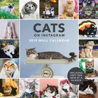 2019 Wall Calendar: Cats on Instagram by @Cats_of_instagram