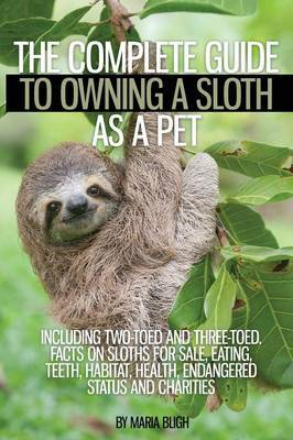 c18ea24674ccb The Complete Guide to Owning a Sloth as a Pet Including Two-Toed and Three