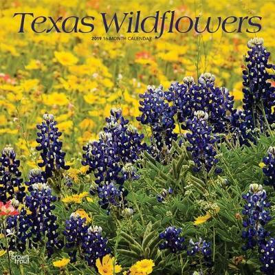 Texas Wildflowers 2019 Square by Inc Browntrout Publishers image
