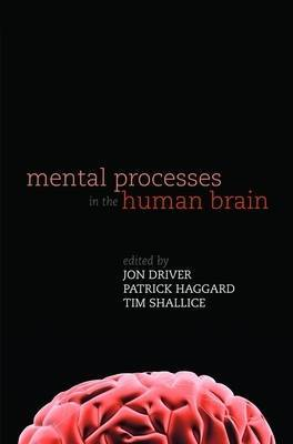 Mental Processes in the Human Brain image