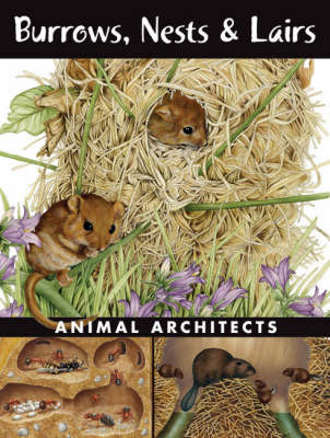 Burrows, Nests and Lairs: Animal Architects by Ada Spada
