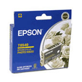 Epson T0540 Gloss Ink Cartridge R800 R1800