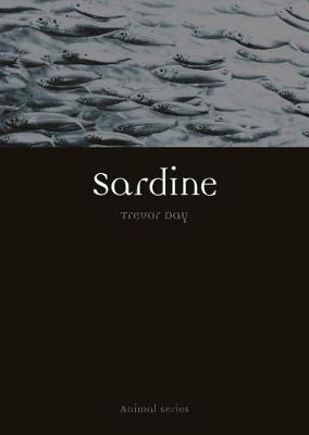 Sardine by Trevor Day image