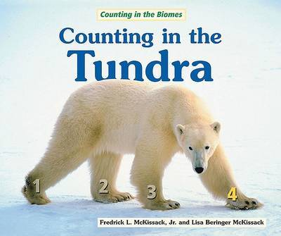 Counting in the Tundra image