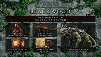 Elder Scrolls Online Collection: Blackwood for Xbox Series X, Xbox One
