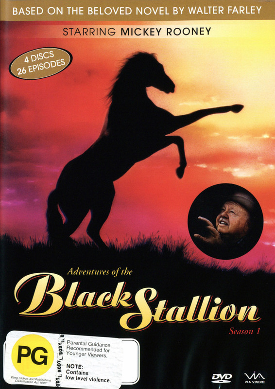 Adventures Of The Black Stallion, The - Complete Season 1 (4 Disc Set) on DVD