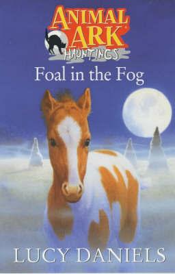 Foal In The Fog by Lucy Daniels