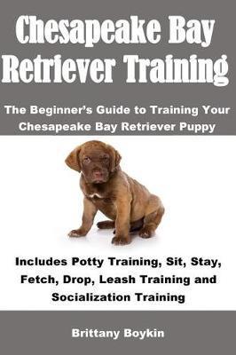 Chesapeake Bay Retriever Training by Brittany Boykin