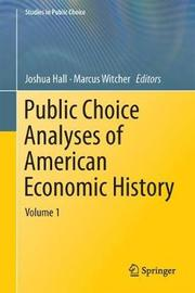 Public Choice Analyses of American Economic History
