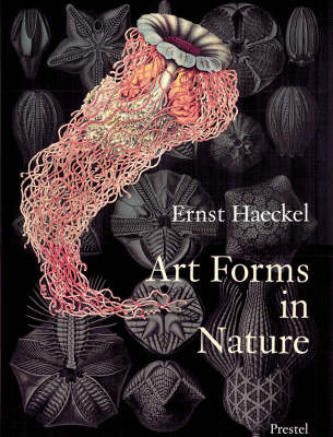Art Forms in Nature: The Prints of Ernst Haeckel by Ernst Haeckel