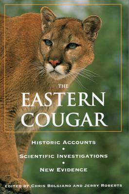 Eastern Cougar by Chris Bolgiano