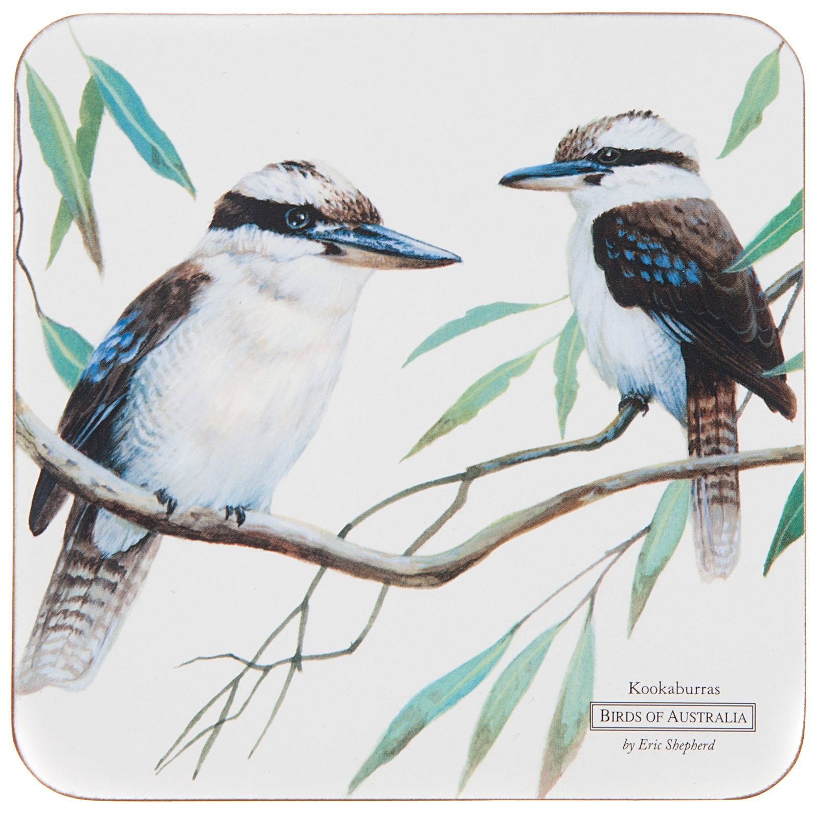 Premise Indicator Words: Eric Shepherd Birds Of Australia