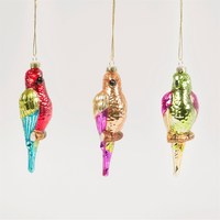Colourful Parrot Bauble (Assorted)