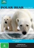 Polar Bear: Spy on the Ice DVD