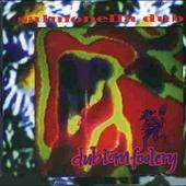 Dub Tom Foolery by Salmonella Dub