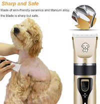 Professional Electric Pet Clippers