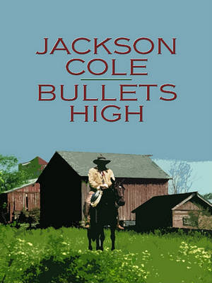 Bullets High by Jackson Cole