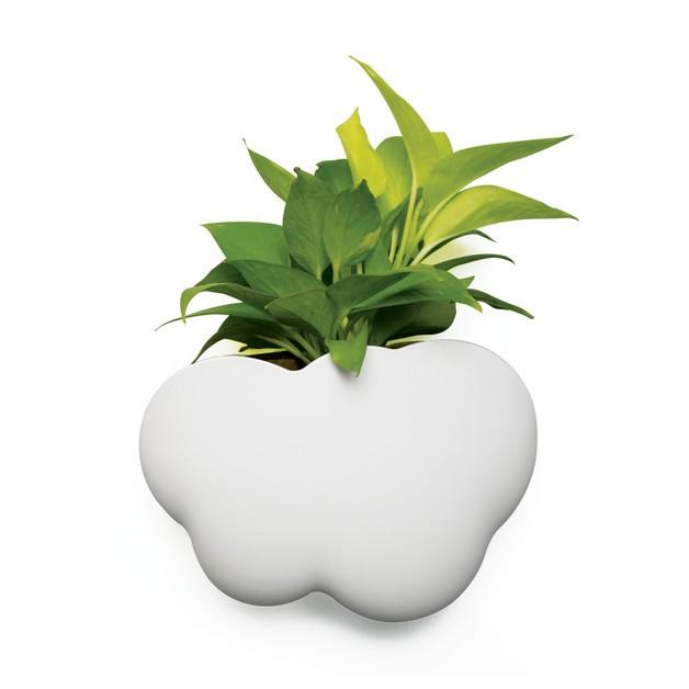 Qualy Cloud Pot (Plant Pot/Accessories Holder)