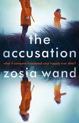 The Accusation by Zosia Wand image