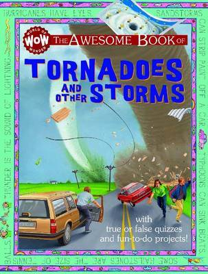 Tornadoes & Other Storms by Kate Petty image
