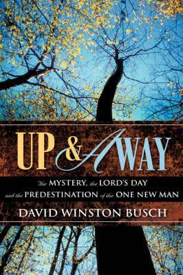 Up & Away by David Winston Busch image