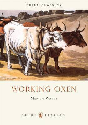 Working Oxen by Martin Watts image